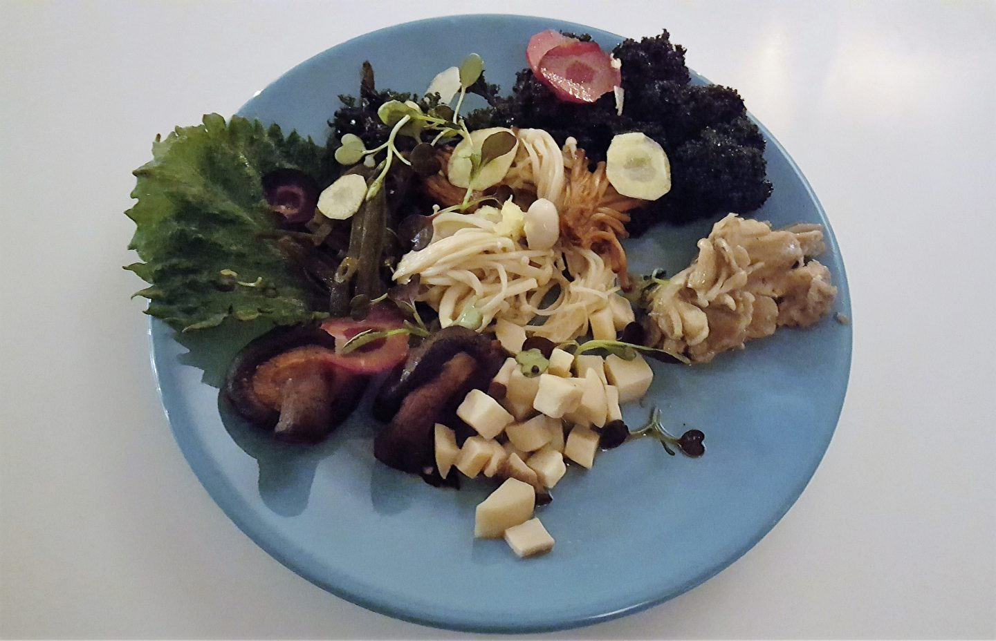 SDP Supper Club: A Mushroom Winter Feast