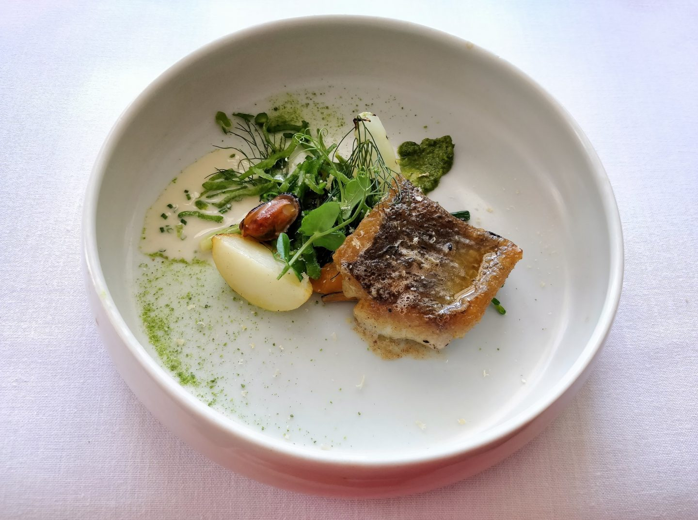 Salsify at The Roundhouse Review